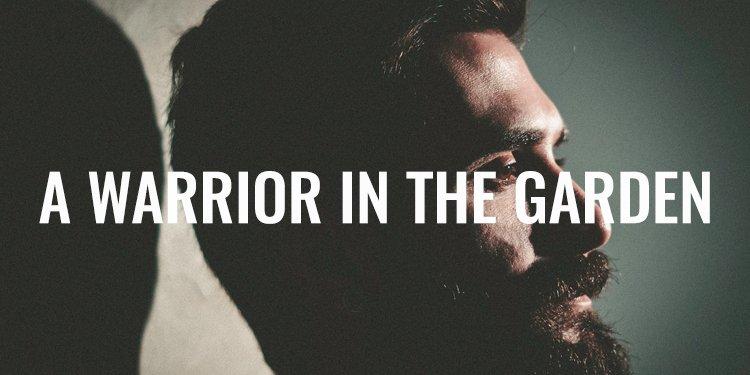 Warrior in the Garden