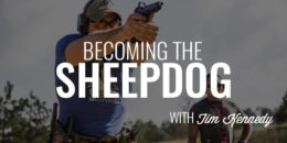 Becoming the Sheepdog