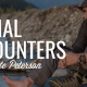 Animal Encounters | COYOTE PETERSON