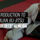 "An Introduction to Brazilian Jiu-Jitsu | ANDRE ""DEDECO"" ALMEIDA"