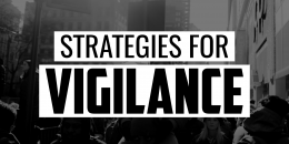 Strategies for Vigilance | FRIDAY FIELD NOTES
