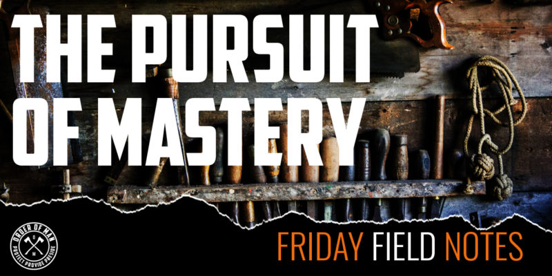 The Pursuit of Mastery